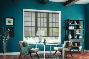 Sheer Window Treatments